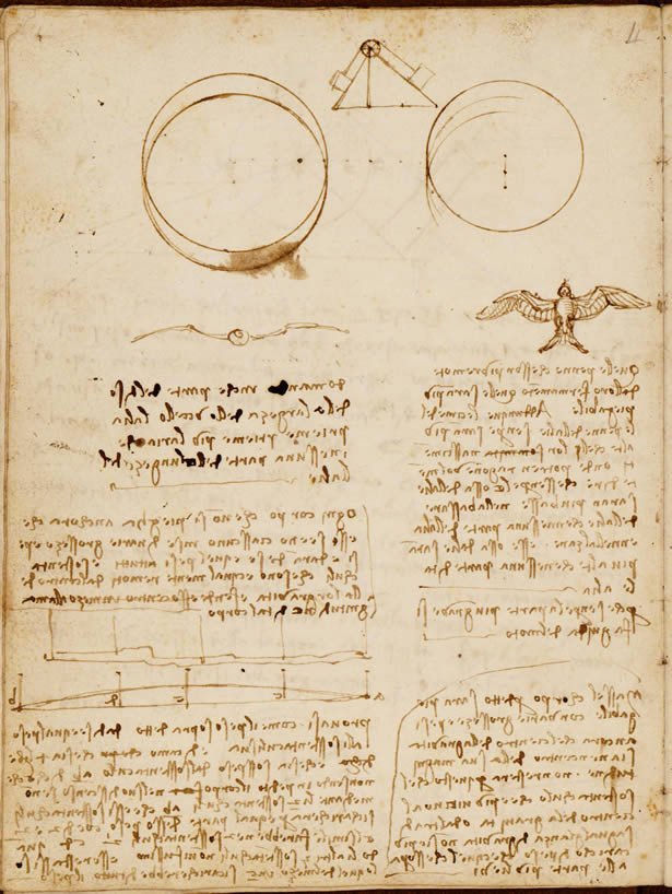 Codex on the Flight of Birds of Leonardo
